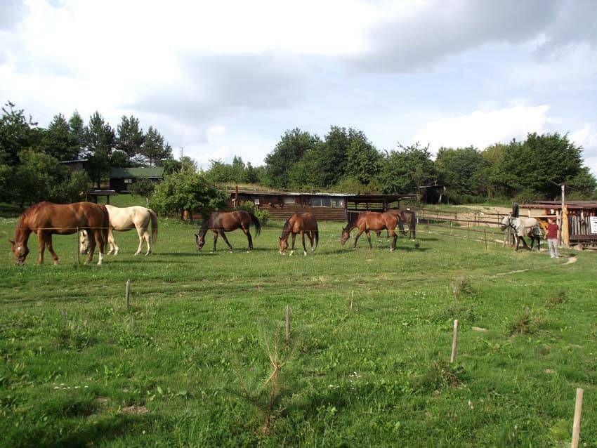 ranč grepa